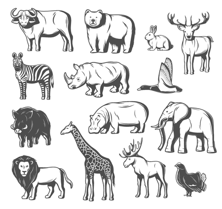 Illustration for Animals and birds icons for zoo or hunt design. Vector isolated wild bear, buffalo ox or elk and deer, aper hog, pheasant or blackcock bird and African elephant, giraffe or zebra and lion - Royalty Free Image