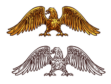 Illustration pour Eagle heraldic icon, sketch medieval style. Griffin with broad wings and sharp claws. Vector mythical or legendary bird with golden plumage, honorable hawk - image libre de droit