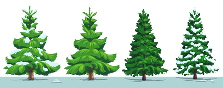 Ilustración de Christmas tree with snow. Vector green pine, fir and spruce trees with snowy branches in winter forest, isolated on white. Xmas and New Year holidays design - Imagen libre de derechos