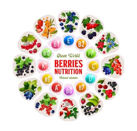 Ilustración de Vitamins in berries - Imagen libre de derechos