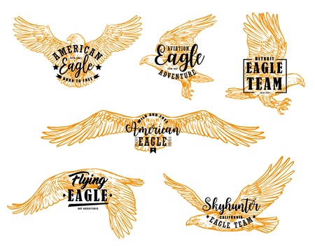 Illustration pour Eagle bird sketches with letterings. Vector hawk, falcon or american eagle spread wings, flying birds of prey heraldic emblems and mascots design - image libre de droit