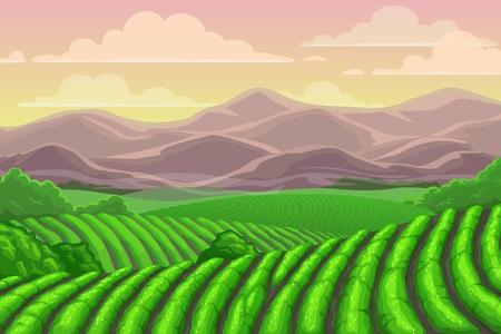 Ilustración de Tea plantation fields, cascade valley landscape with mount scenery. Vector Chinese or Sri Lanka meadows with mountains backdrop, terraced agriculture. Asian plants cultivation, rural countryside - Imagen libre de derechos