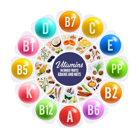 Illustration for Dried fruit, nus and grais vitamins round chart. Nutrition facts vector graph with peanut, date and almond, raisins, fig and hazelnut, cereal grains, walnut and pistachio, apricot, oat, buckwheat - Royalty Free Image