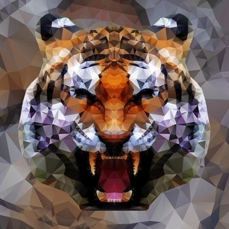 Illustration pour Low poly design. Tiger illustration. - image libre de droit
