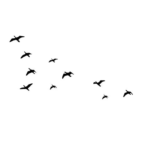 Ilustración de Flying birds silhouettes on white background. Vector illustration. isolated bird flying. - Imagen libre de derechos