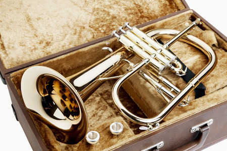 Photo for flugelhorn - Royalty Free Image