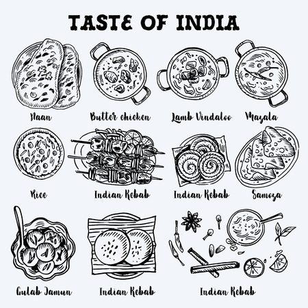 Illustration pour Indian food drawing. Linear graphic. Vector illustration. Engraved style. - image libre de droit
