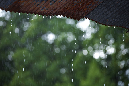 rain drop from roof