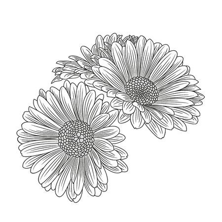 Illustration pour Abstract hand-drawn flower chamomile. Element for design. Vector illustration. - image libre de droit