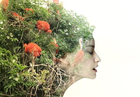 Foto de Artistic surreal female profile in a metamorphosis with nature - Imagen libre de derechos