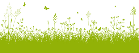 Illustration pour Fresh Green Grass Landscape with Herbage and Butterflies in Springtime on White Background - Vector Illustration - image libre de droit