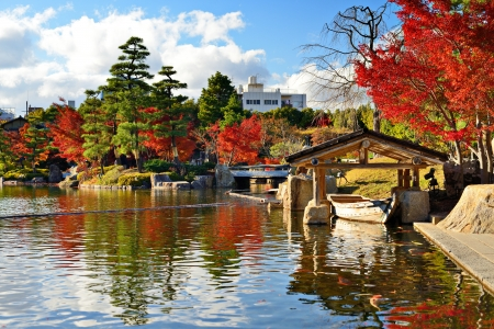 Photo pour Fall foliage at  in Nagoya, Japan. - image libre de droit