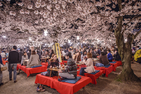 Foto de KYOTO, JAPAN - APRIL 3, 2014: People enjoy the spring season by partaking in nighttime Hanami festivals. The annual festivals coincide with the seasonal blooming of the cherry blossoms. - Imagen libre de derechos
