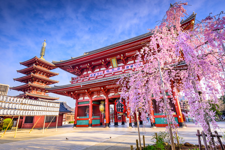 Photo pour Tokyo, Japan at Sensoji Temple's Hozomon Gate in the Asakusa District in the springtime. (White lanterns on the left read the names of several streets and parks such as, kannon street, orange street, etc.  Top sign on gate reads Sensoji Temple Banners - image libre de droit