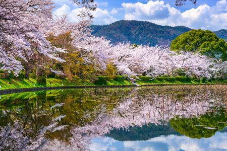 Foto de Kyoto, Japan in the Spring at Daikaku-ji Temple's pond. - Imagen libre de derechos