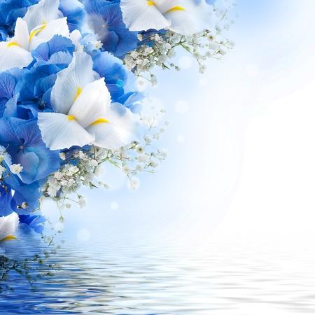 Photo pour Flowers in a bouquet, blue hydrangeas and white irises - image libre de droit