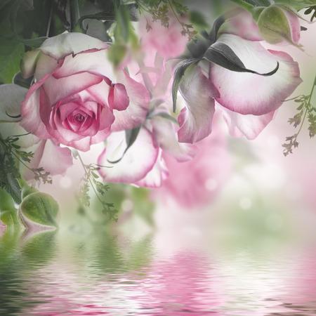 Photo pour Bouquet of fresh roses, flower bright background. - image libre de droit
