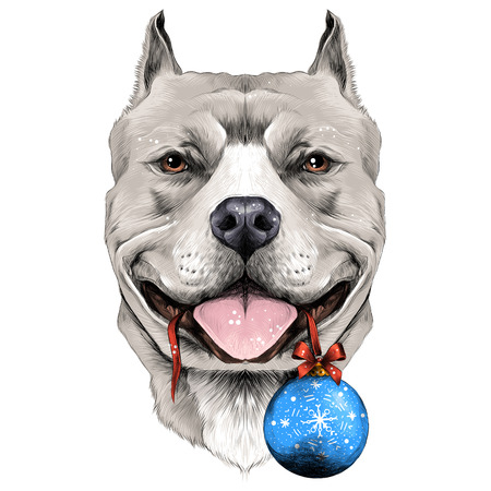 Illustration pour dog breeds the American pit bull Terrier white color head on new year's eve ball in the teeth sketch vector graphics color picture - image libre de droit