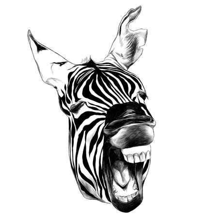 Illustration pour Zebra head contorts face. - image libre de droit
