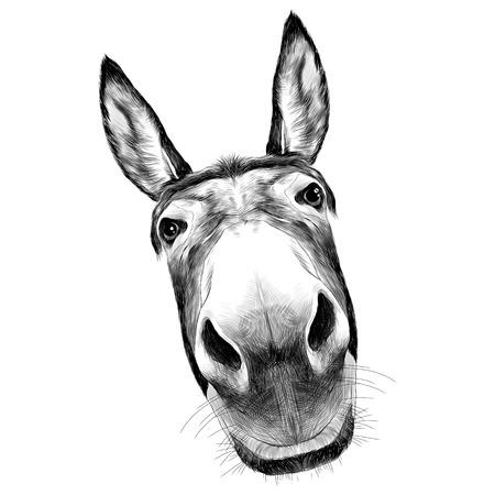 Ilustración de ass front view with a large head, looks black and white illustration monochrome - Imagen libre de derechos