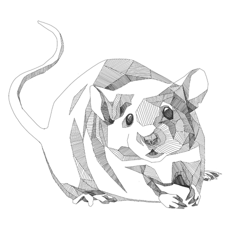 Illustration for mouse sketch vector graphics monochrome - Royalty Free Image
