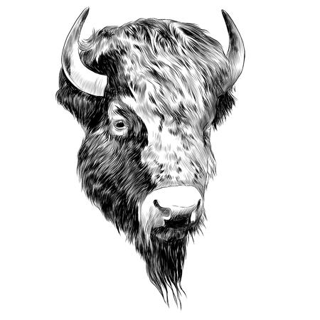 Ilustración de Bison sketch graphic design. - Imagen libre de derechos