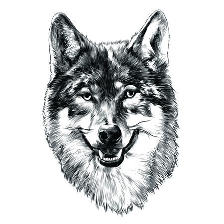 Illustration pour Wolf head sketch graphic design. - image libre de droit