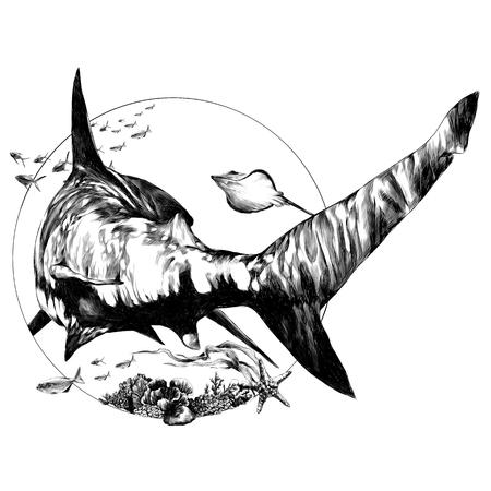 Ilustración de shark sketch for a t-shirt back vector graphics monochrome black-and-white drawing - Imagen libre de derechos