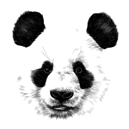 Ilustración de head Panda no outline in space sketch vector graphics monochrome drawing - Imagen libre de derechos