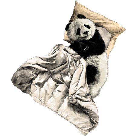 Illustration pour Panda lies on a pillow under a blanket sketch graphics colored picture - image libre de droit
