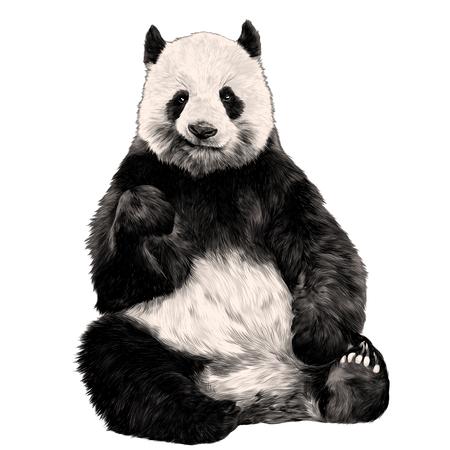 Illustration pour Panda sitting smiling figure in full-length sketch vector graphics color - image libre de droit
