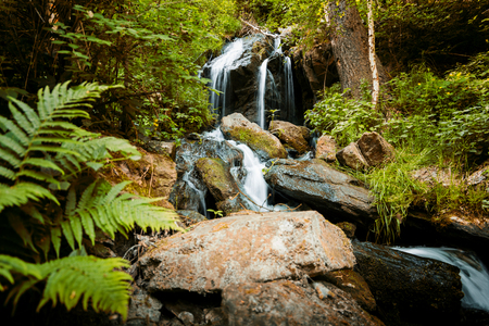 Photo pour Cascade falls over mossy rocks in Czech forest - image libre de droit