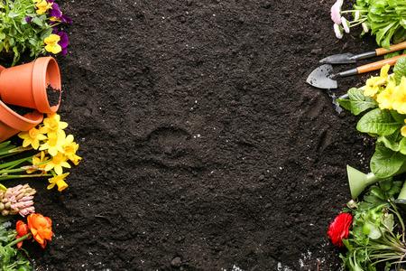 Foto de Composition with flowers and gardening tools on soil background - Imagen libre de derechos