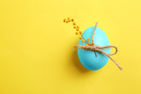 Photo for Easter egg with mimosa on color background - Royalty Free Image
