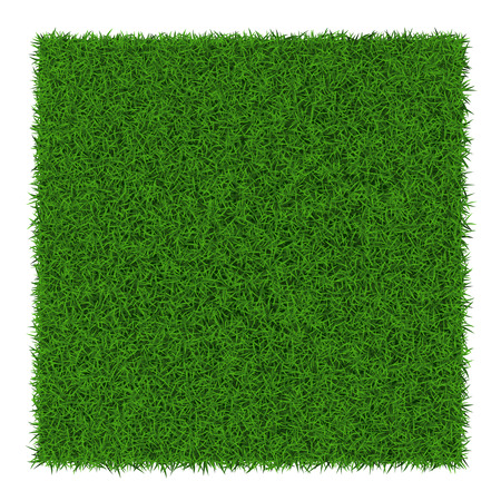 Illustration pour Square green grass banners, vector illustration. - image libre de droit