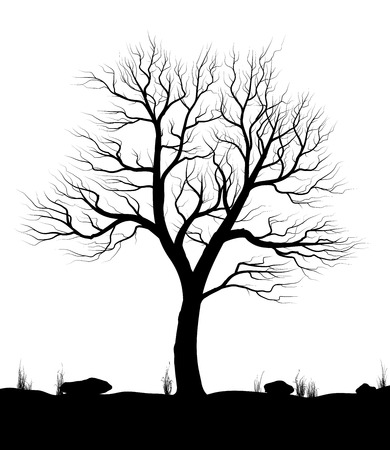 Photo pour Landscape with old tree and grass over white background. Black and white vector illustration. - image libre de droit