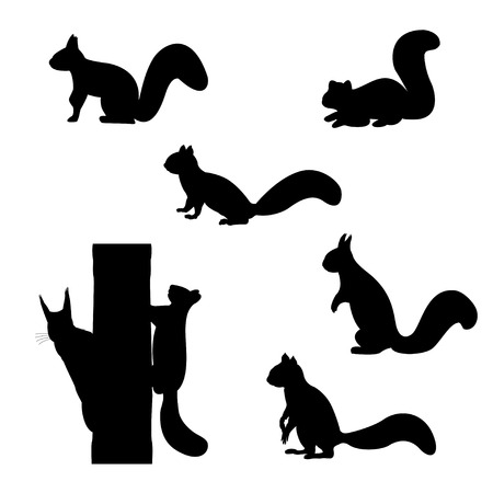 Illustration pour Set of silhouettes of squirrels. - image libre de droit