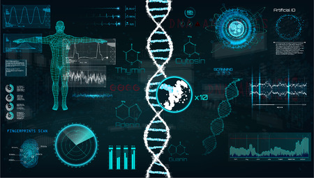 Illustration pour HUD, DNA infographic interface. Interface, vector graphic, medical, heart, bpm, body scan, dna, graphs, diagrams, futuristic design. Modern medical Examination in HUD style. Vector UI template set - image libre de droit