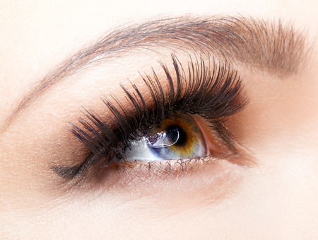 Photo pour Female eye with long eyelashes closeup shot - image libre de droit