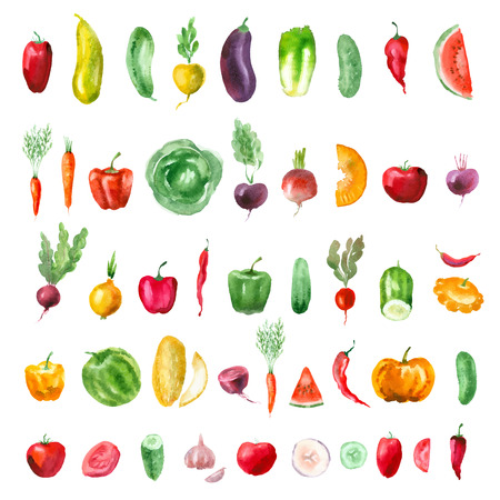 Vegetables. Vector format