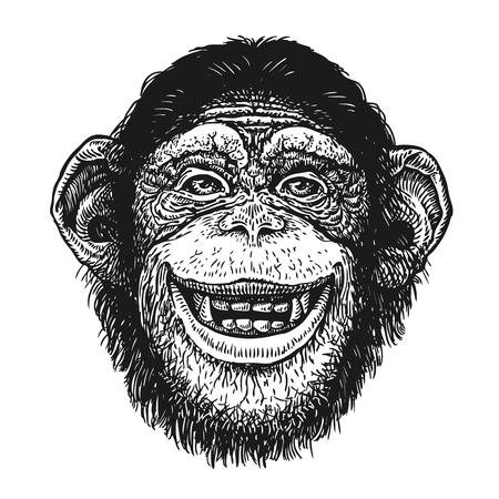 Illustration for Hand drawn portrait of chimpanzee. Funny monkey, neanderthal man. Sketch vector illustration - Royalty Free Image