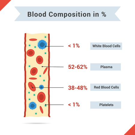 Illustration pour Infographics of blood composition. Tubes of blood and four components with description for articles or other media - image libre de droit