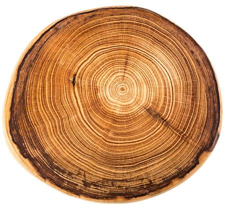 Photo pour Wood circle texture slice background - image libre de droit
