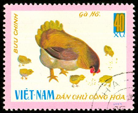 Foto de Ukraine - circa 2018: A postage stamp printed in Vietnam shows drawing Ho Chicken with their chickens - Gallus gallus domesticus. Series: Domestic fowl. Circa 1968. - Imagen libre de derechos