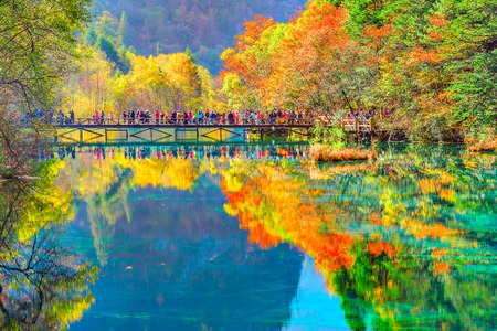 Photo for Trees by the colorful lake at autumn day time. Jiuzhaigou nature reserve, Jiuzhai Valley National Park, China. - Royalty Free Image