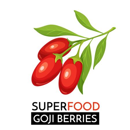 Illustration pour Goji berries vector icon. - image libre de droit