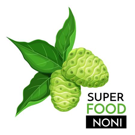 Illustration pour Noni vector icon. - image libre de droit