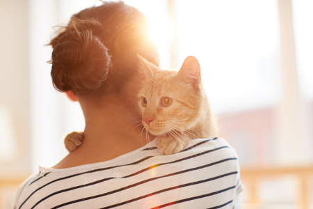 Photo for Ginger Cat Embracing Owner - Royalty Free Image