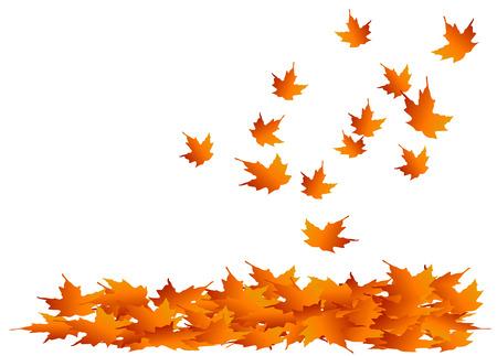Illustration pour Autumn maple leaves falling into a pile - image libre de droit