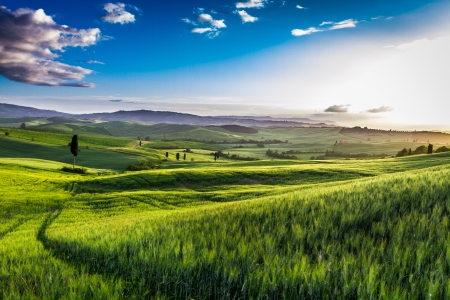 Photo pour Rising fog in the valley at sunset, Tuscany - image libre de droit